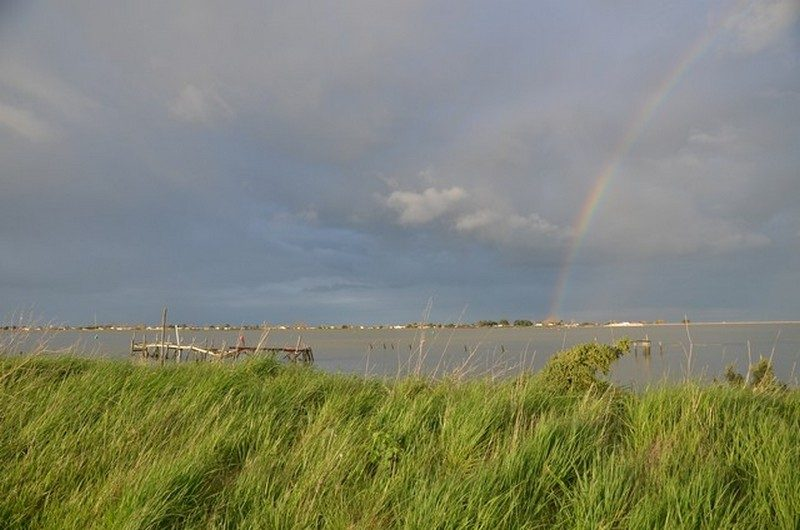 Pointe d'Arçay