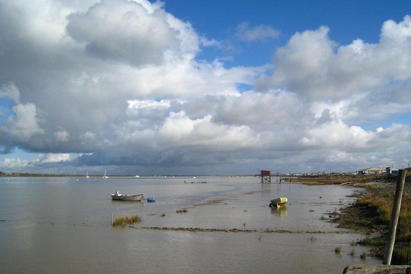 Bords de charente à Port-des-barques